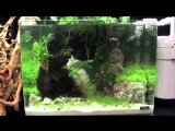 The Art of the Planted Aquarium 2015 - Scapers Tank (Nano) category, part 10