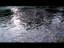 VID 20170823 155554 река Лососинка вечер