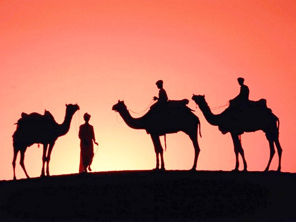 Притча 18-й верблюд
