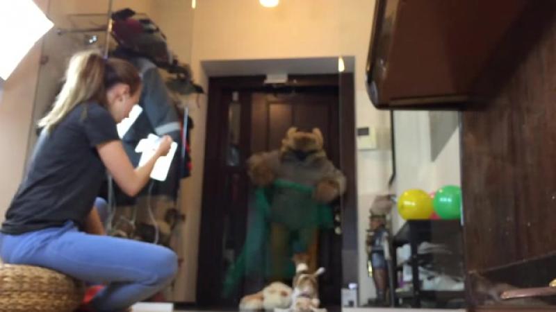 Итальянское порно девушка с членом заставила сосать