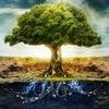 Все о древесине в жизни человека - People/Wood