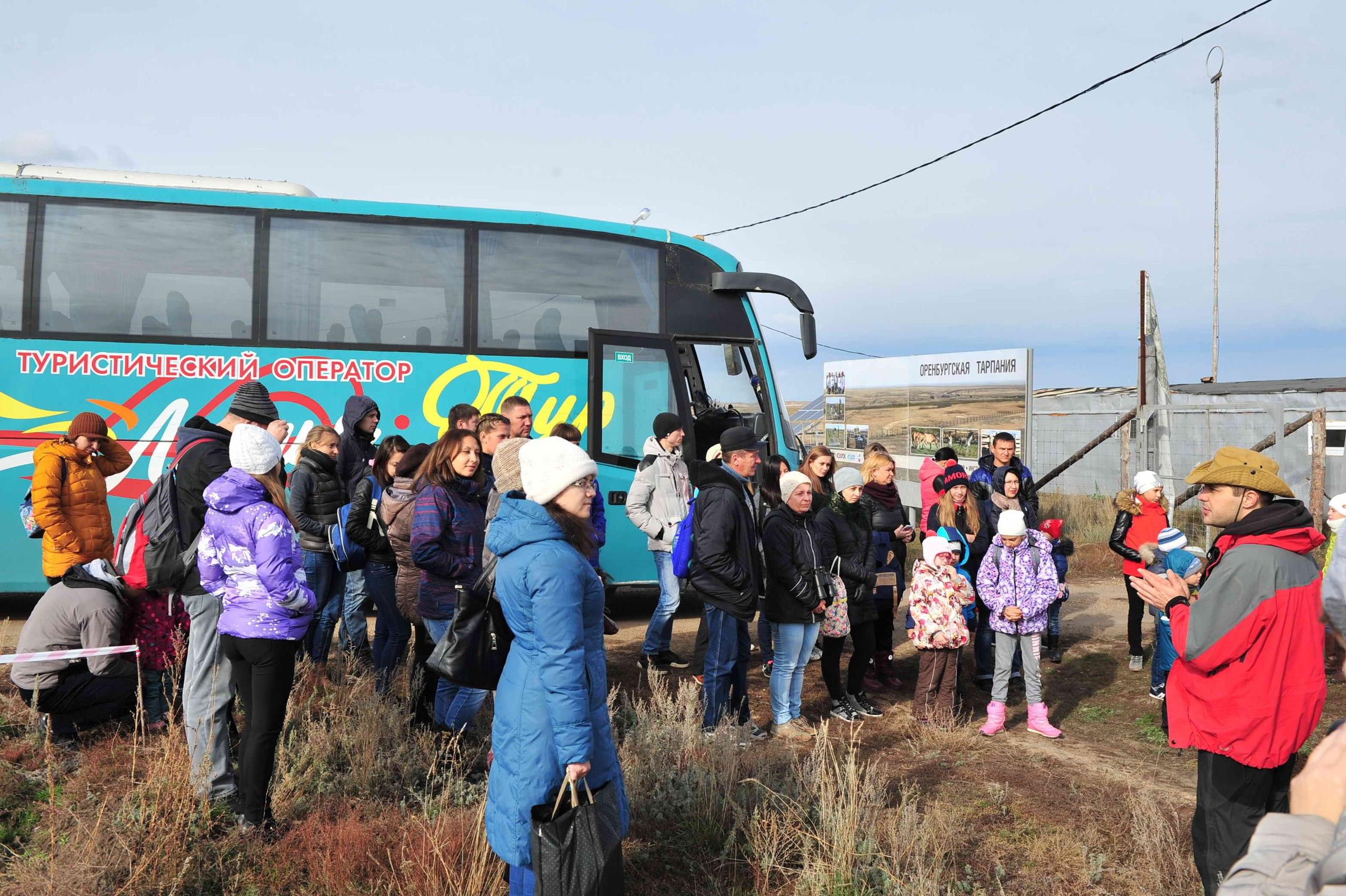 Начало экскурсии в «Оренбургскую Тарпанию»