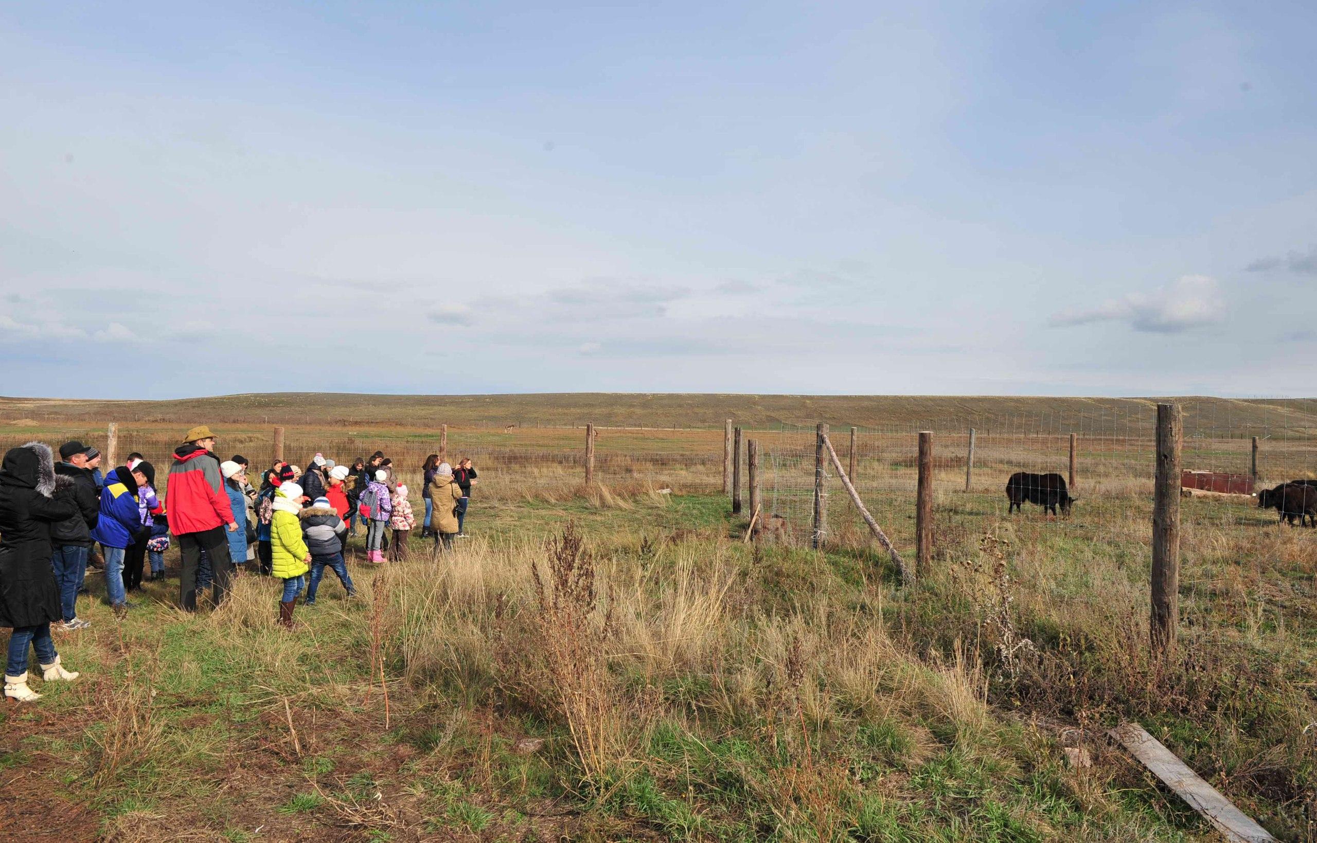 Экскурсионная группа у вольеров с яками