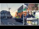 소주한잔 | soju han jan/Неделя влогов/Рассвет и белый день.