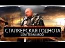 Сталкерская годнота: STALKER:LSM Team Mod