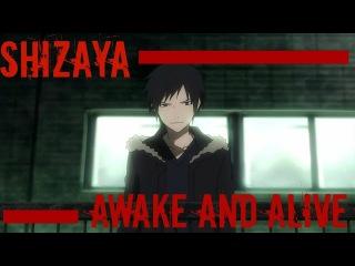 Shizaya - Awake and Alive AMV