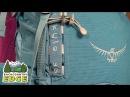 Osprey Kyte 36 Backpack