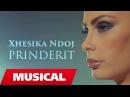 Xhesika Ndoj - Prinderit