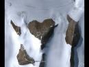 Сердечко в Антарктиде