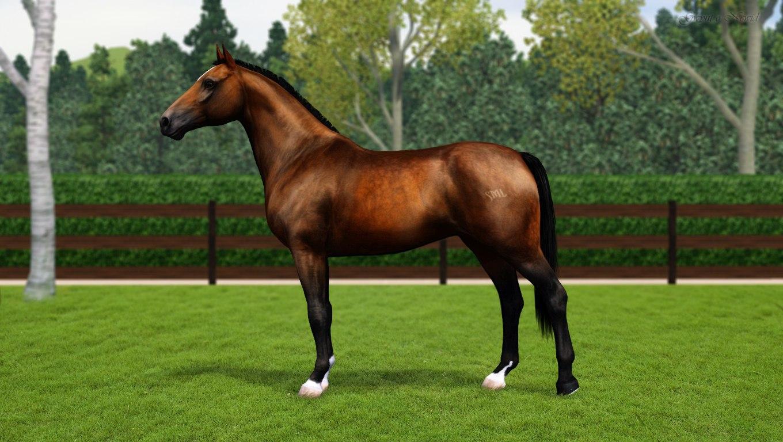 Регистрация лошадей в RHF 2 - Страница 7 HQ_q5RA4pwM