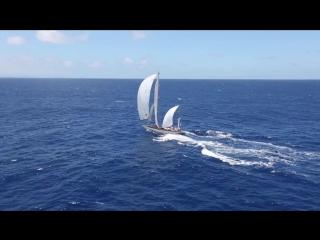 Il Transpac 47 ° ( 2013 ).  52 FT «DORADE».