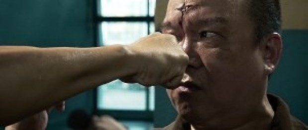 Kung Fu Jungle in Hindi Movie Screen Shots 4
