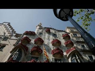 Viu el dia de Sant Jordi a Barcelona. 2017