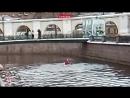 Гребец-трюкач показал шоу в канале Грибоедова в центре Петербурга