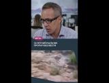 В Аризоне погибли девять человек из-за паводка
