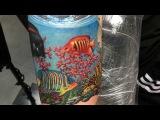 Installing the aquarium on hand!