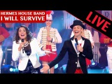 Hermes House Band - I Will Survive Live dans les ann