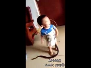 Маленький мальчик из Китая беспечно играет со змеёй