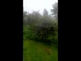 Сильна злива