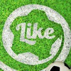 Школа футбола Like Йошкар-Ола