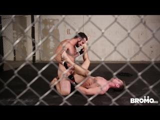 Порно красавицы  150 видео смотреть бесплатно
