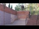Courage Adams Animal Bikes BMX