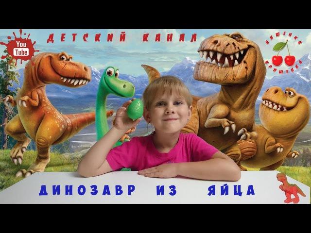 Динозавры растущие в воде из яиц | Dinosaur Growing In Water. Яйцо динозавра.