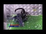 скорпион против рака Scorpion vs Cancer Scorpion gegen Krebs