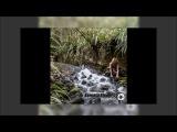 Kerensa Stephens - Aviatrix - 02 feat Zero Cult - Rain