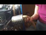 Как очень просто и быстро сделать горшки для выращивания растений из чёрной пле ...