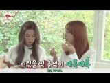 161104 Red Velvet @ Picnic On Sunny Afternoon Part 1, Clip 3 (рус. саб)