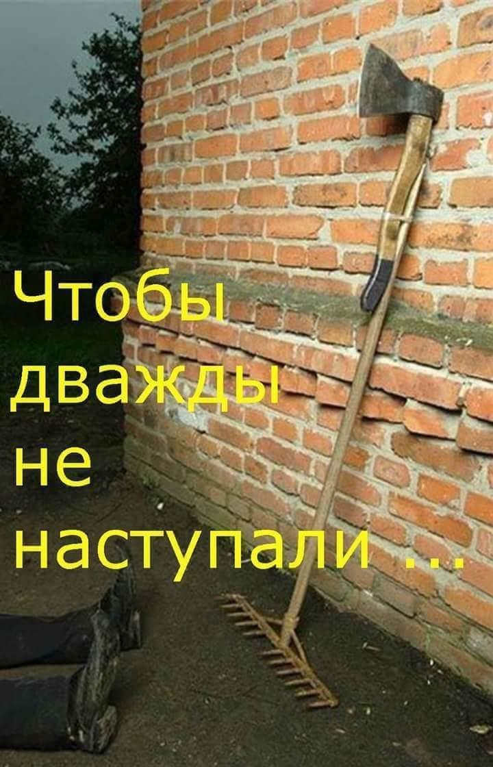 https://pp.userapi.com/c638131/v638131985/35ad2/fhXo1x3z2Ss.jpg