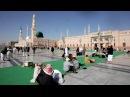 Вести Паломников из Катара доставят на хадж за счет Саудовской Аравии