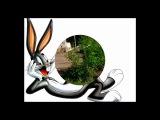 JokesForYou №6 - Bugs Bunny