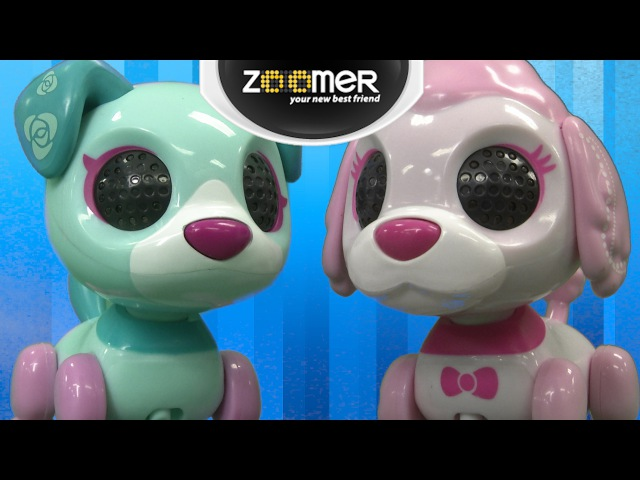 Zoomer Zupps Tiny Pups Posy Coco from Spin Master