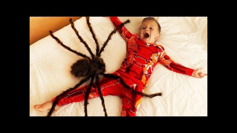 ★ ГИГАНТСКИЙ ПАУК напал на Детей GIANT SPIDERS ATTACK Щенячий Патруль PAW Patrol game Video for Kids