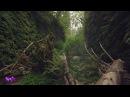 Beautiful nature ( 4K, Ultra, HD)