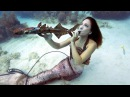 Поклонники музыки и дайвинга провели Подводный фестиваль на островах Флорида-Кис новости