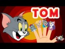 Tom and Jerry New 2017