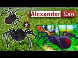 Гигантский паук атакует Bad Baby Giant Spiders Attack Вредные детки ПАУК ЧЕРНАЯ ВДОВА
