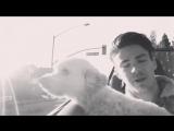 Грант Гастин и его собака Нора