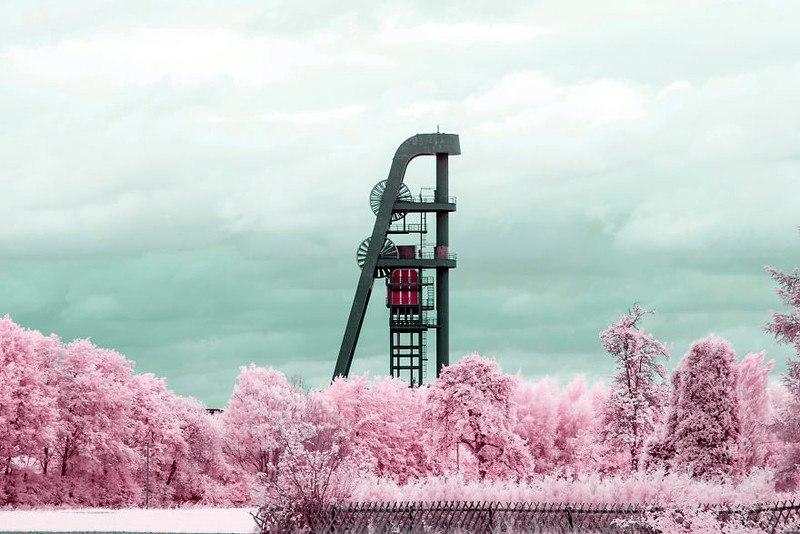 Фотографии с инфракрасным фильтром - это другая вселенная
