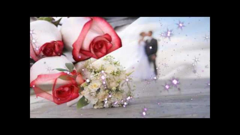 Свадебные футажи, скачать свадебные футажи, бесплатные свадебные футажи, свадебные футажи бесплатно, свадебные футажи
