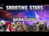 Bag Raiders - Shooting Stars (Animal Cover)