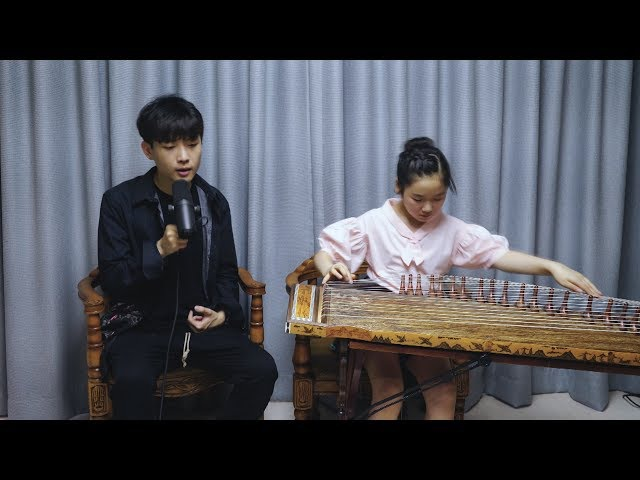 BTS - Blood Sweat Tears Cover (Beatbox X gayageum)