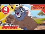 Lion Guard Chungu and Cheez Disney Junior UK