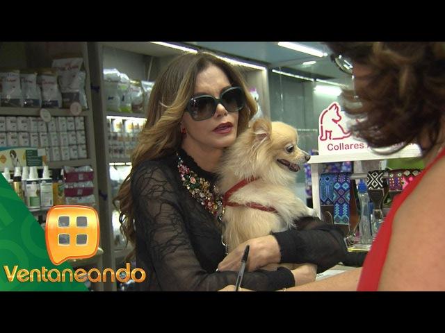 Lucía Méndez apapacha a su mascota en un spa canino Ventaneando sin filtros