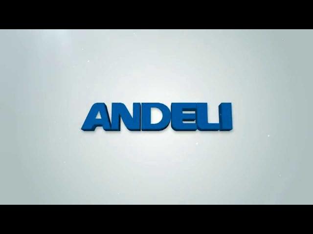 ANDELI Устройство автоматического ввода резерва АВР HATS7