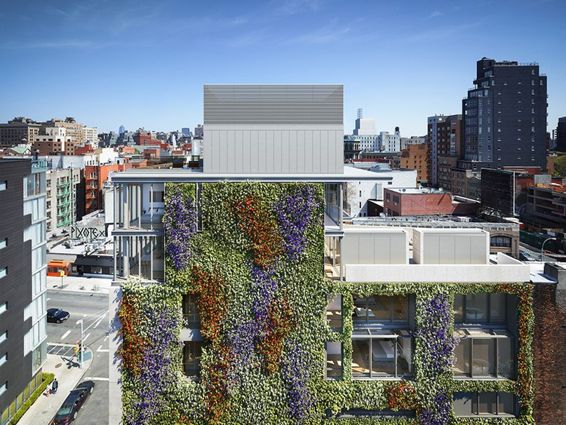 green walls in new york: a roundup of the city's growing number of vertical gardens