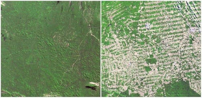 До и после - как время изменило поверхность Земли  Облик нашей планеты уже не тот, каким был десятилетия назад, 10 фото-доказательств NASA это подтверждают.